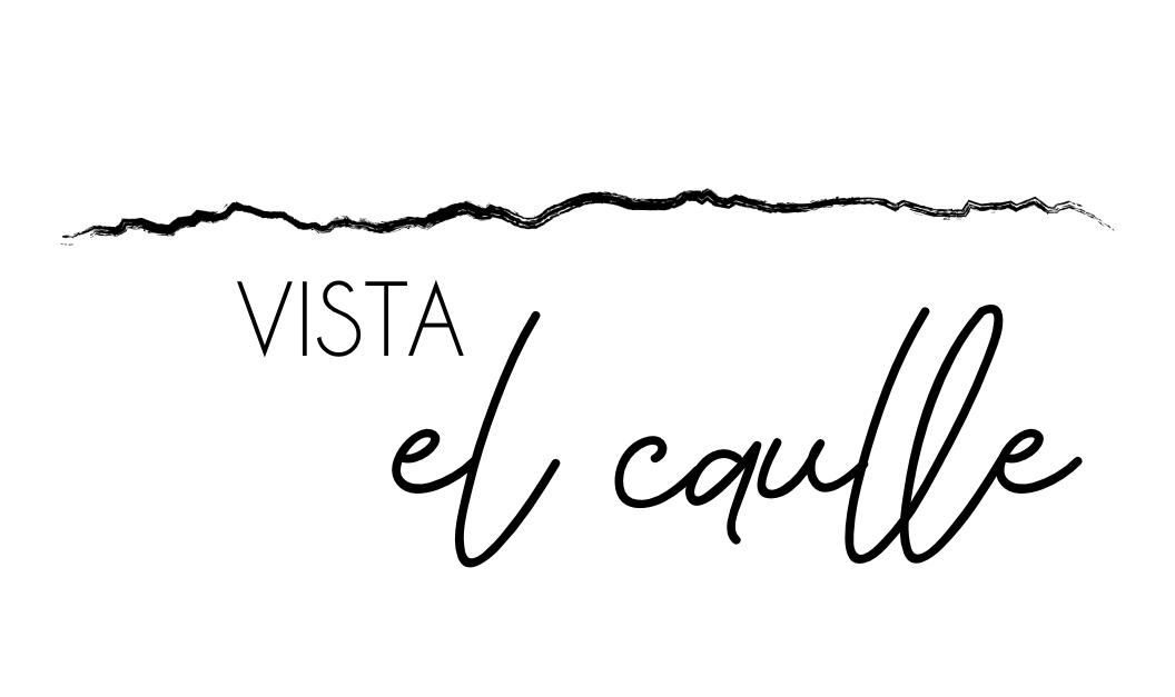 Vista el Caulle