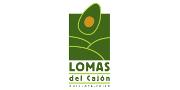 Condominio Lomas del Cajón